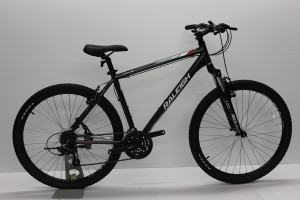 Raleigh Talus Image